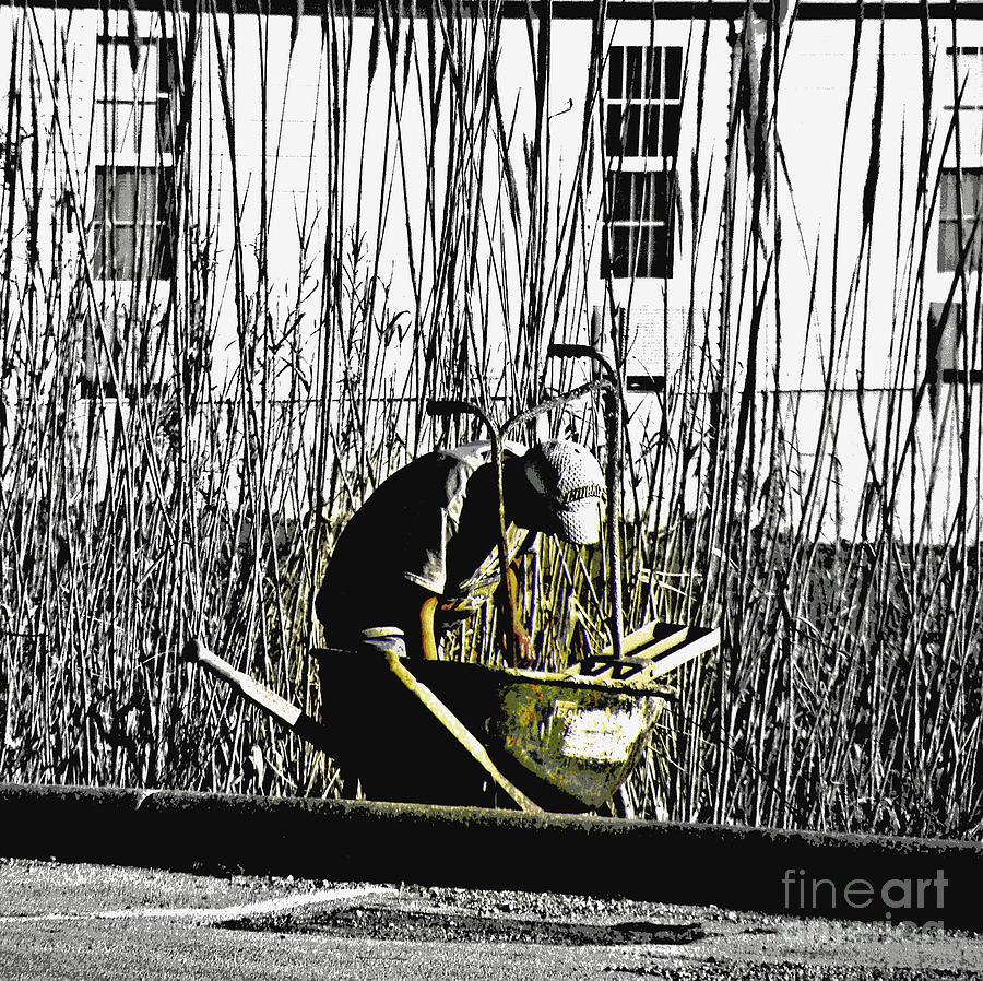 Wheelbarrow Photograph - The Joy Of Working by Joe Jake Pratt