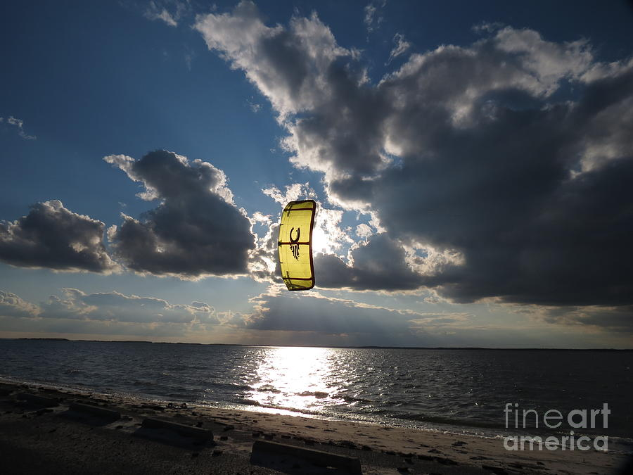 Kite Photograph - The Kite by Rrrose Pix