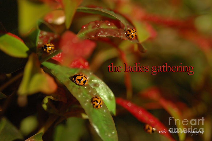 The Ladies Gathering by Vicki Ferrari
