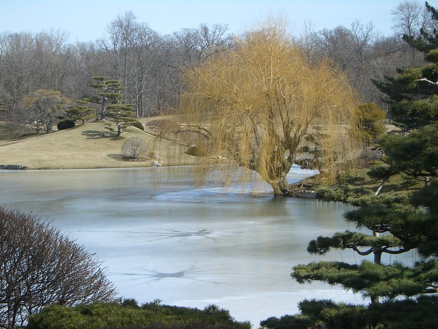 Landscape Photograph - The Landscape In February by Dragica Lukovic