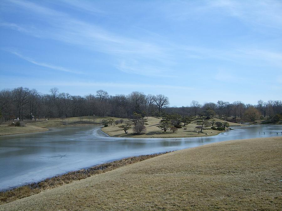 Landscape Photograph - The Landscape In February Part IIi by Dragica Lukovic