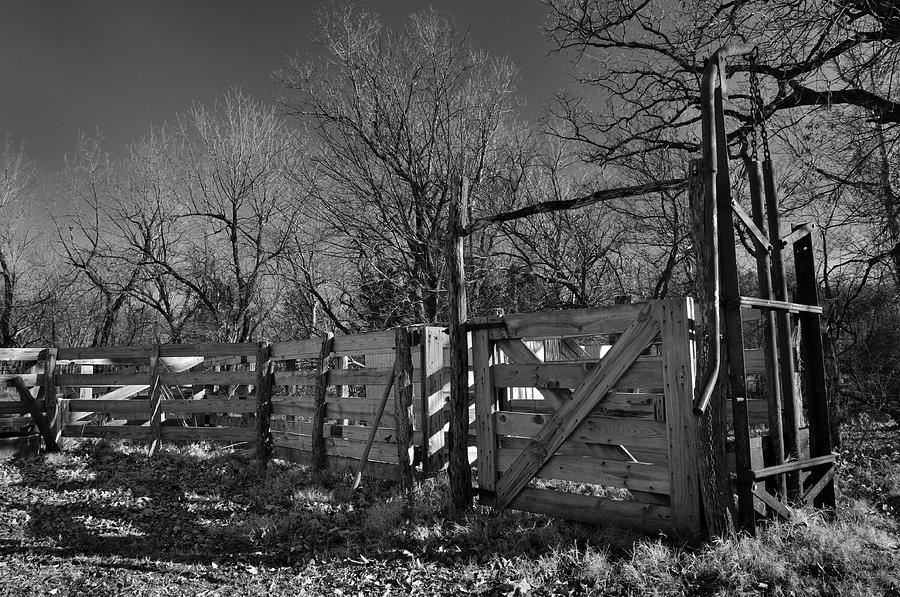 Farm Photograph - The Loading Pen by Ron Cline