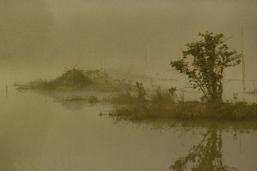 Pond Photograph - The Lodge In The Mist by Skip Willits