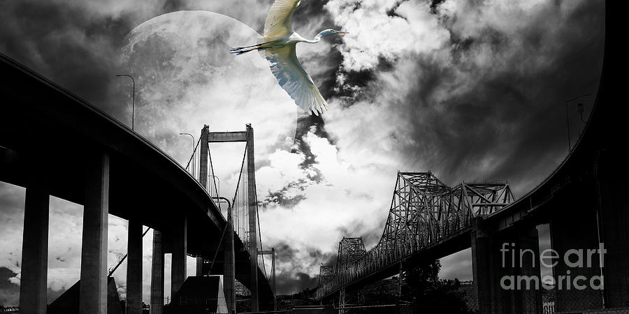 Wingsdomain Photograph - The Long Journey by Wingsdomain Art and Photography