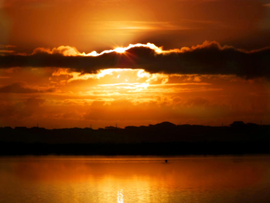 Sunrises Photograph - The Magic Of Morning by Karen Wiles