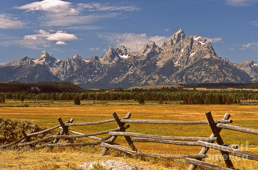 Tetons Photograph - The Majestic Tetons by Joe Elliott