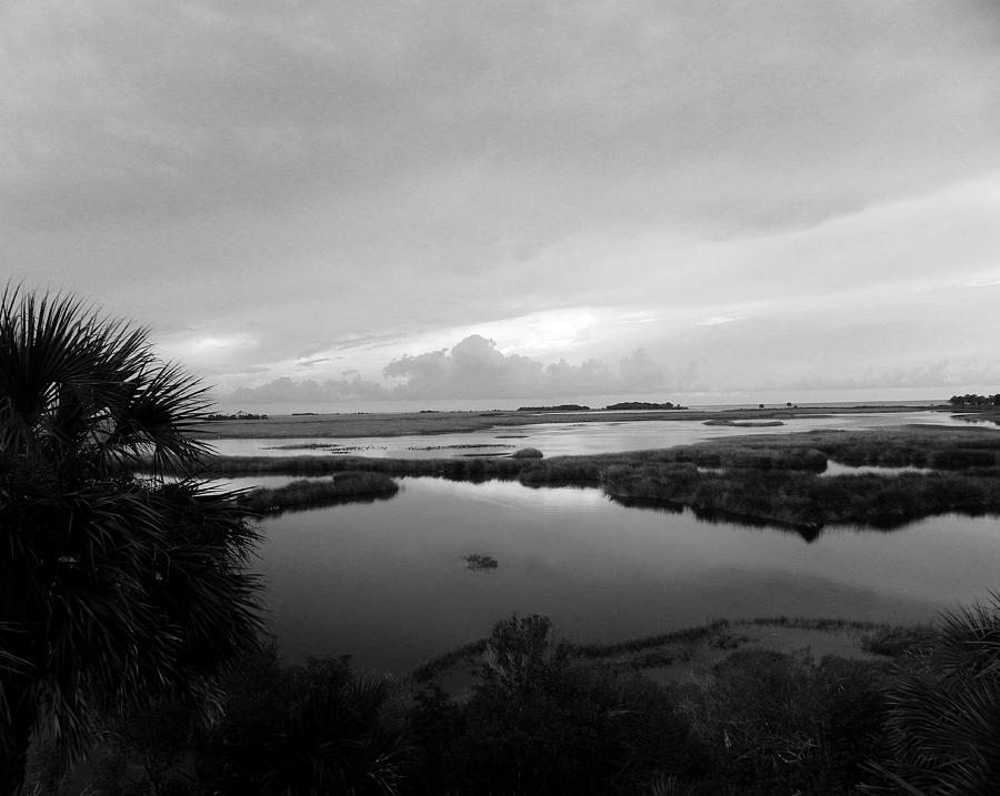 Nature Photograph - The Marshes Of St. Marks by Judy Wanamaker