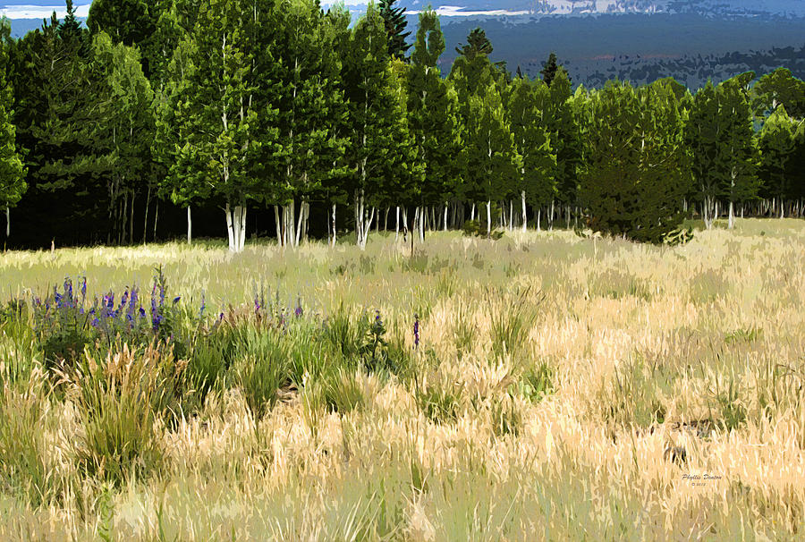 Landscape Photograph - The Meadow Digital Art by Phyllis Denton
