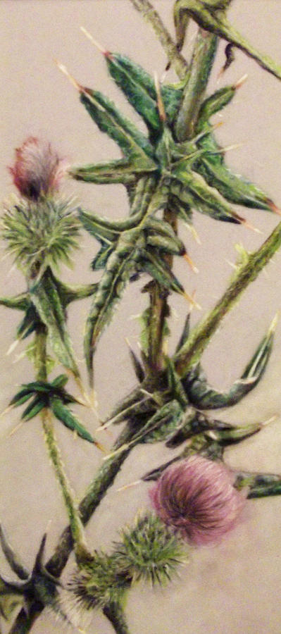Flowers Painting - The Medow by Tanya Patey