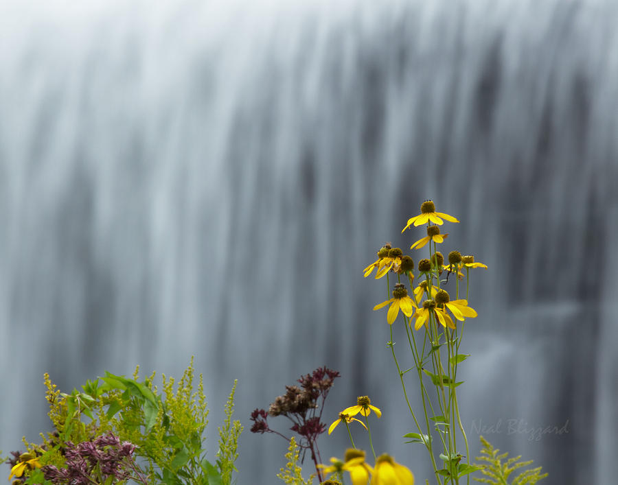 Landscape Photograph - The Middle Falls II by Neal Blizzard