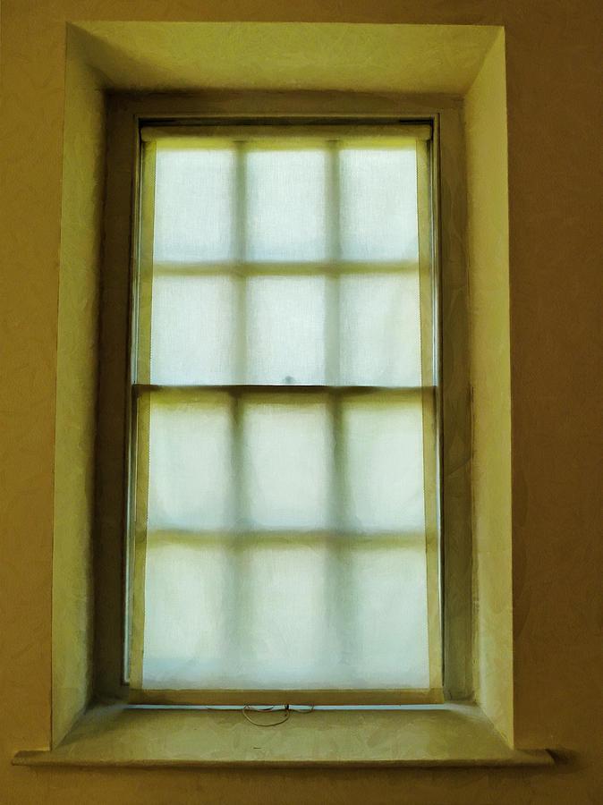 Window Photograph - The Mustard Window by Steve Taylor