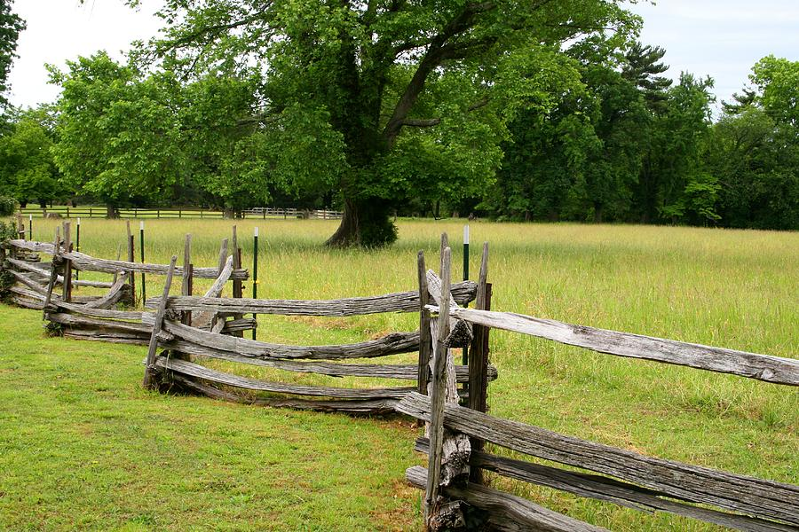 Nature Photograph - The Old Fence by Valia Bradshaw