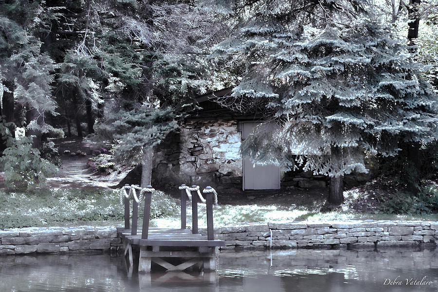 Water Photograph - The Old Swimming Hole by Debra     Vatalaro