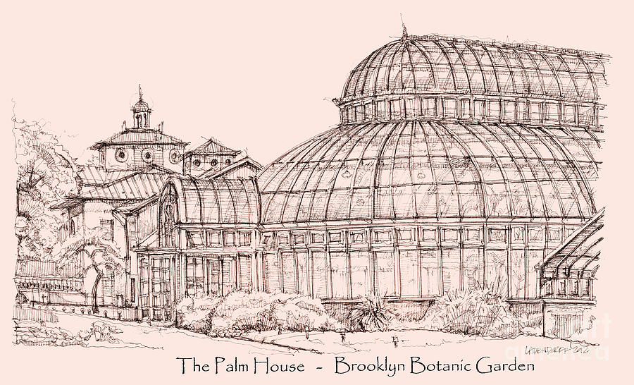 Palm Drawing - The Palm House In Pink by Adendorff Design