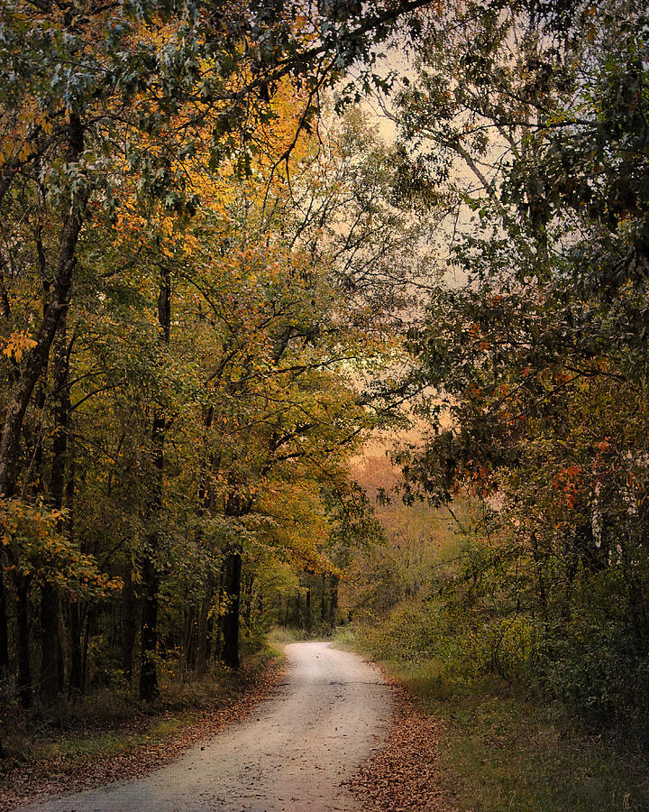 Autumn Photograph - The Path Less Traveled 2 by Jai Johnson