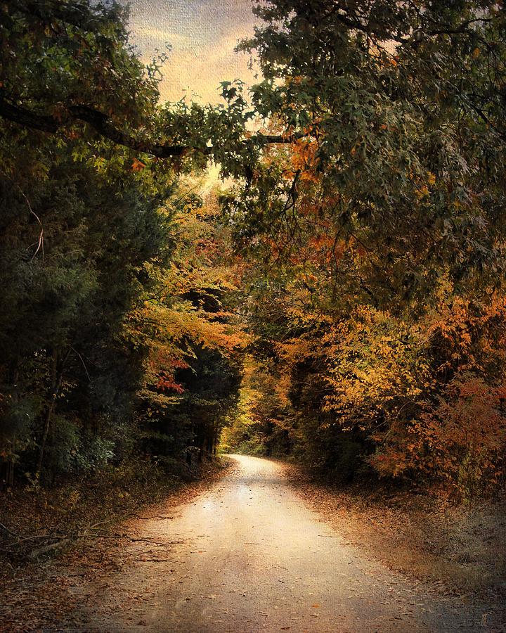 Autumn Photograph - The Path Less Traveled by Jai Johnson