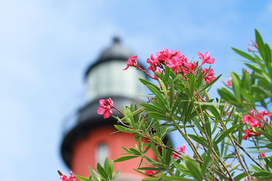 Light House Photograph - The Ponce by Jose Rodriguez