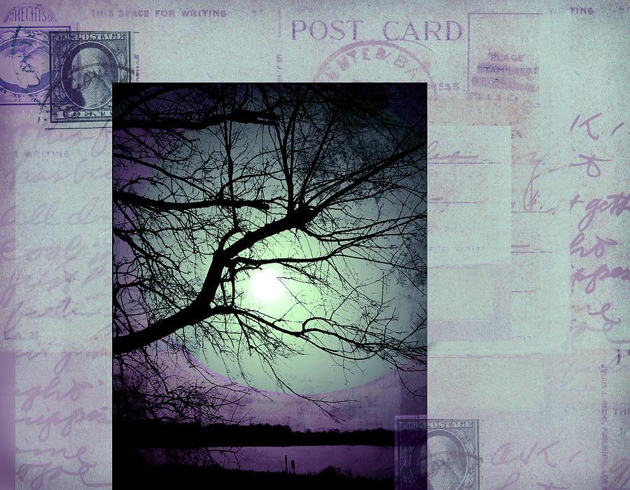 Vintage Digital Art - The Postcard IIi by Ann Powell