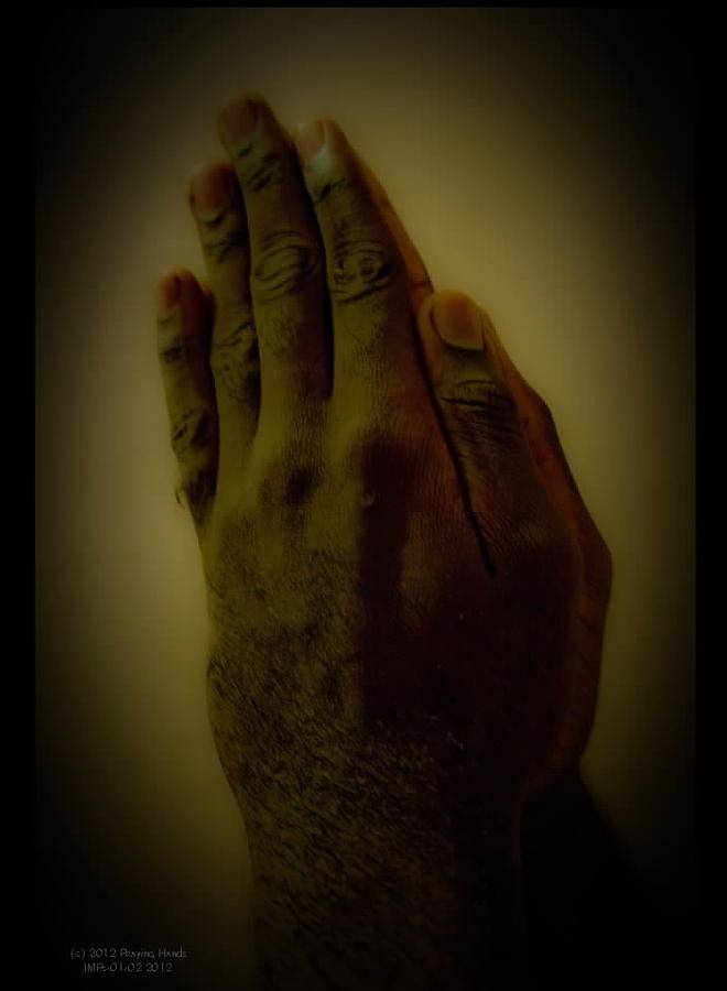 The Praying Hands Photograph by David Alexander