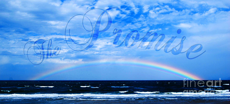 Rainbow Photograph - The Promise by Linda Mesibov