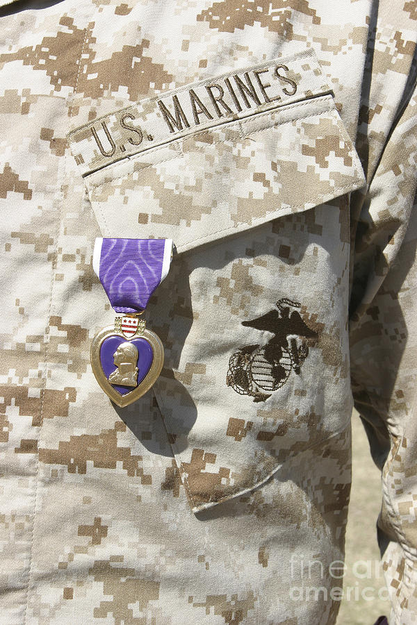 Display Photograph - The Purple Heart Award Hangs by Stocktrek Images
