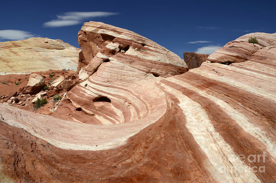 Valley Of Fire Photograph - The Purple Wave by Bob Christopher