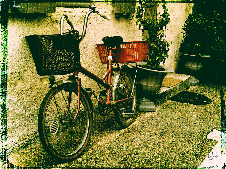 Vintage Bicycle Photograph - The Quiet Life by Georgia Fowler