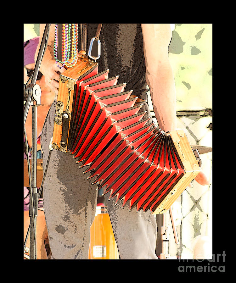 Accordian Photograph - The Red Accordian by Margie Avellino