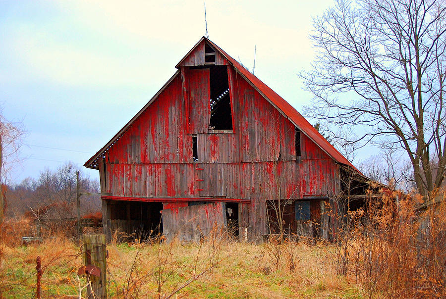 Red Photograph - The Red Barn by Robin Pross