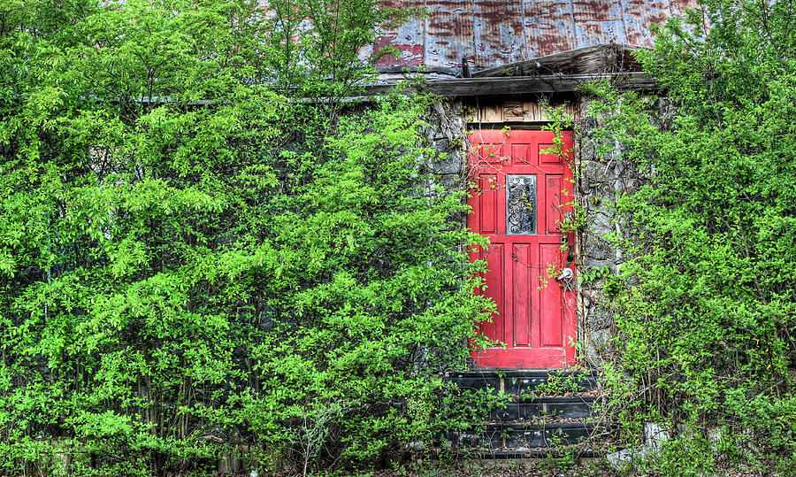 Va Photograph - The Red Door by JC Findley