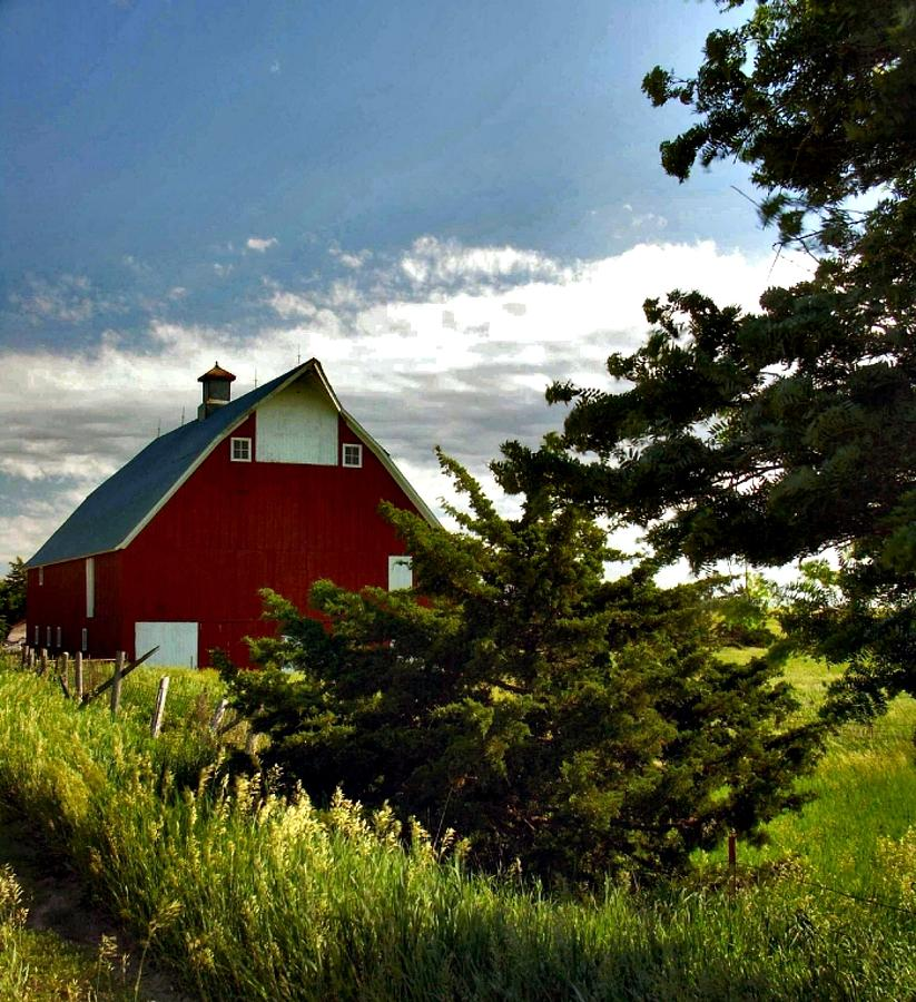 Barn Photograph - The Red Green Show by Lynne and Don Wright