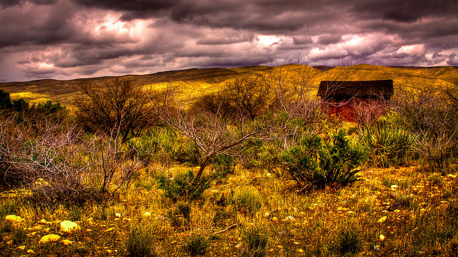 Red Rock Photograph - The Red Shed At Red Rock Canyon by David Patterson