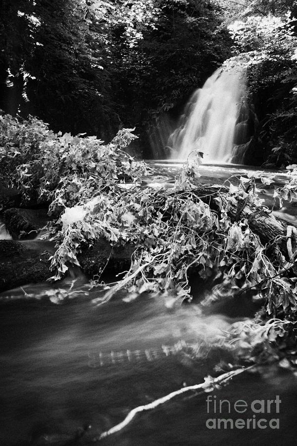 Glenoe Photograph - the river at the Gleno or Glenoe Waterfall beauty spot county antrim by Joe Fox