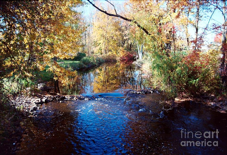River Photograph - The River by Crissy Sherman