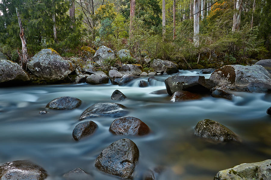 East Kiewa River Photograph - The River Wild by Mark Lucey
