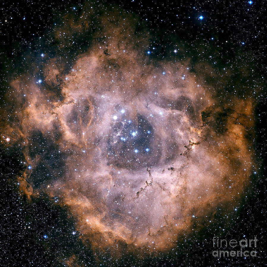 Astronomy Photograph - The Rosette Nebula by Charles Shahar