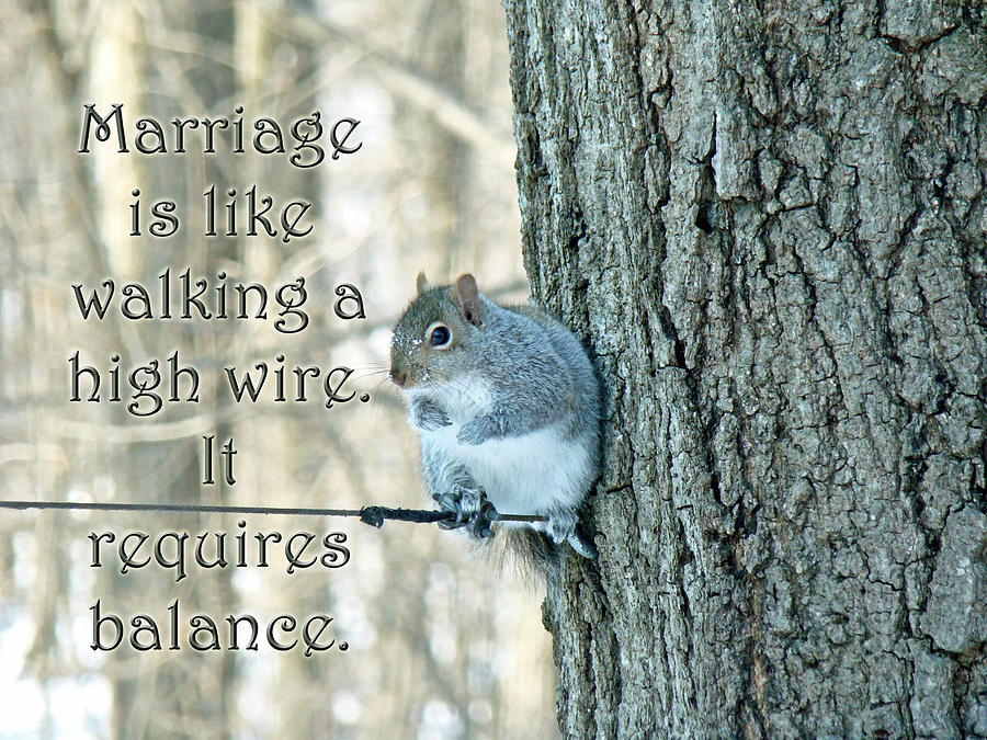 Marriage Photograph - The Sage Of The High Wire by Mother Nature