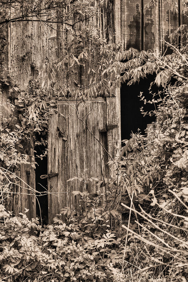 The Secret Door Photograph - The Secret Door by JC Findley