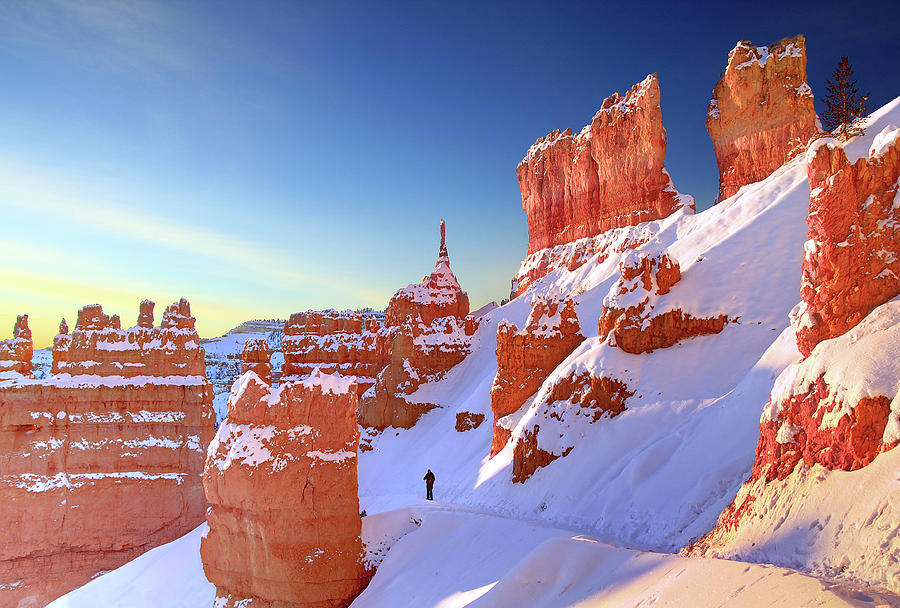 Horizontal Photograph - The Sentinal Bryce Canyon by (C) Rob Little