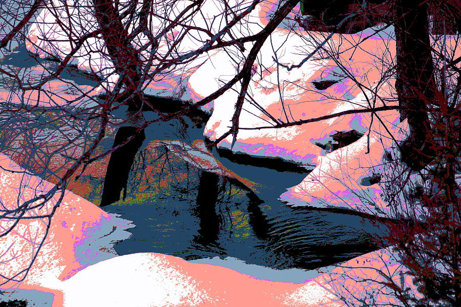 Snow Photograph - The Shades Of Winter by Shirley Mailloux
