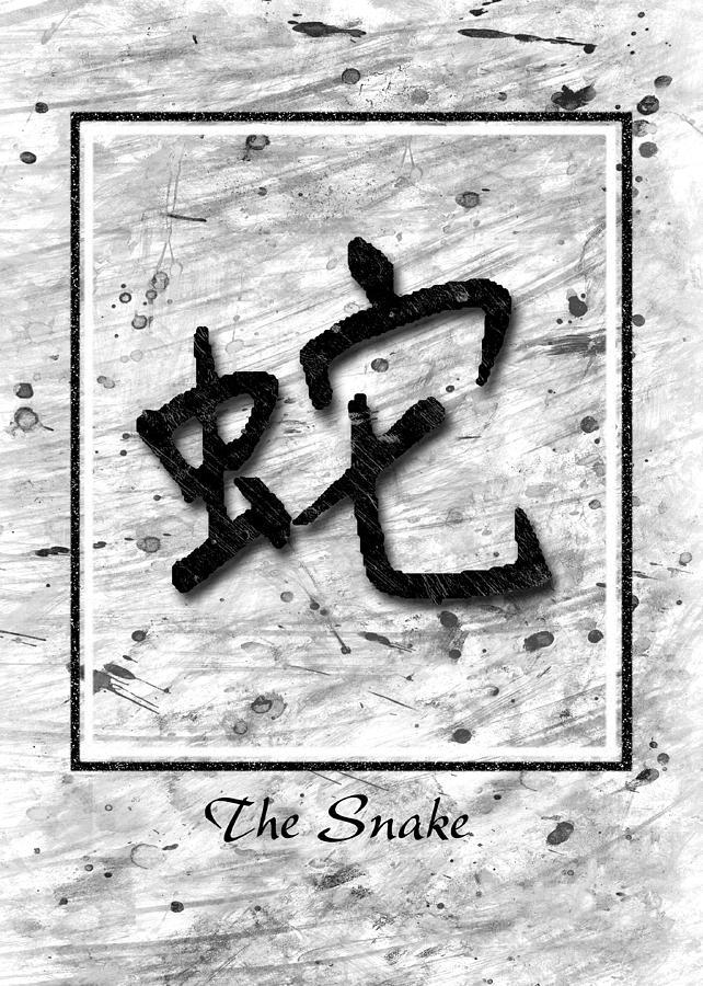 Framed Pyrography - The Snake by Mauro Celotti