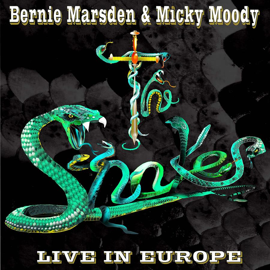 Fantasy Painting - The Snakes Live In Europe by Penny Golledge