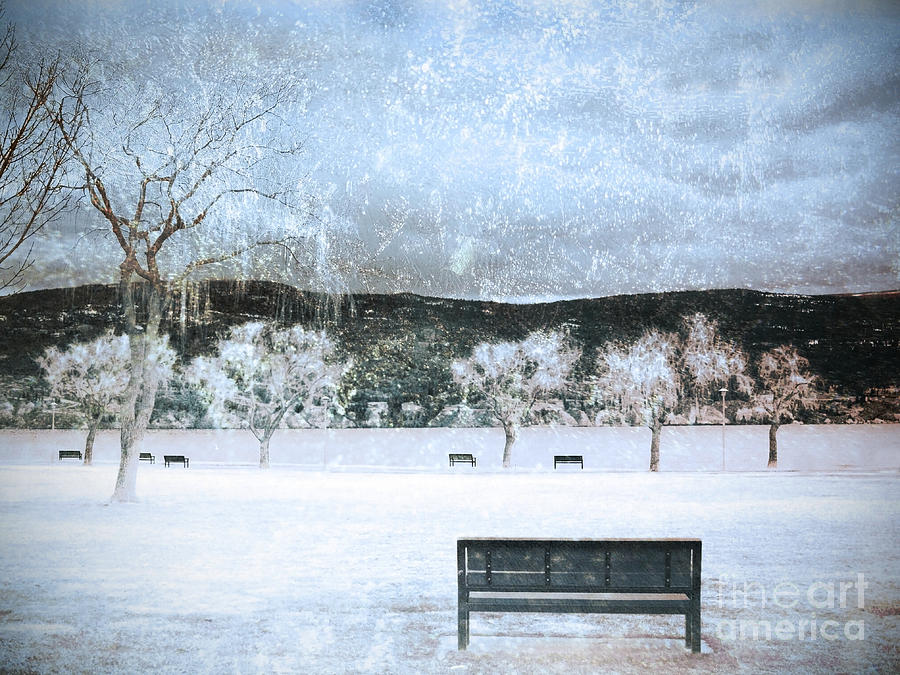Snow Photograph - The Snow Storm by Tara Turner