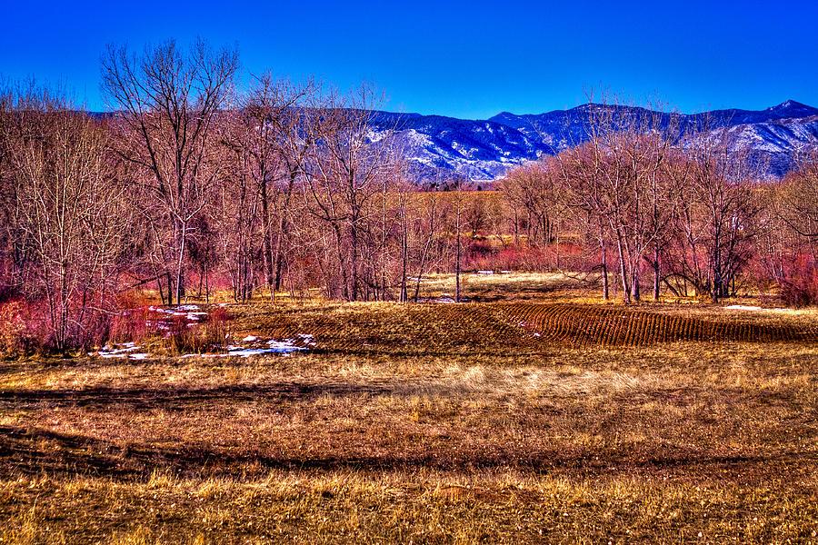 Denver Photograph - The South Platte Park Landscape by David Patterson