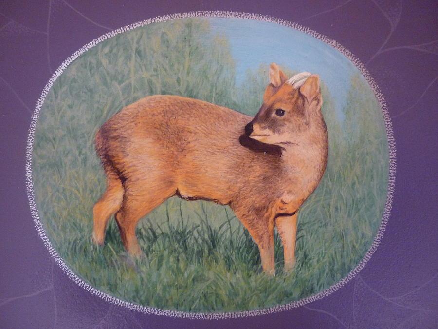 Pudu Painting - The Southern Pudu by Ronald Osborne