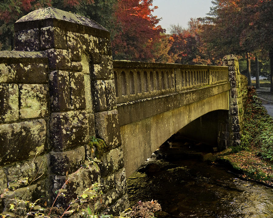 Bridge Photograph - The Span by Larry Bishop