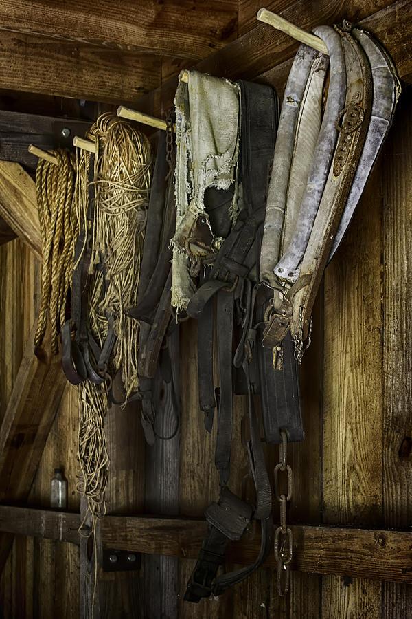 Tack Room Photograph - The Tack Room Wall by Lynn Palmer