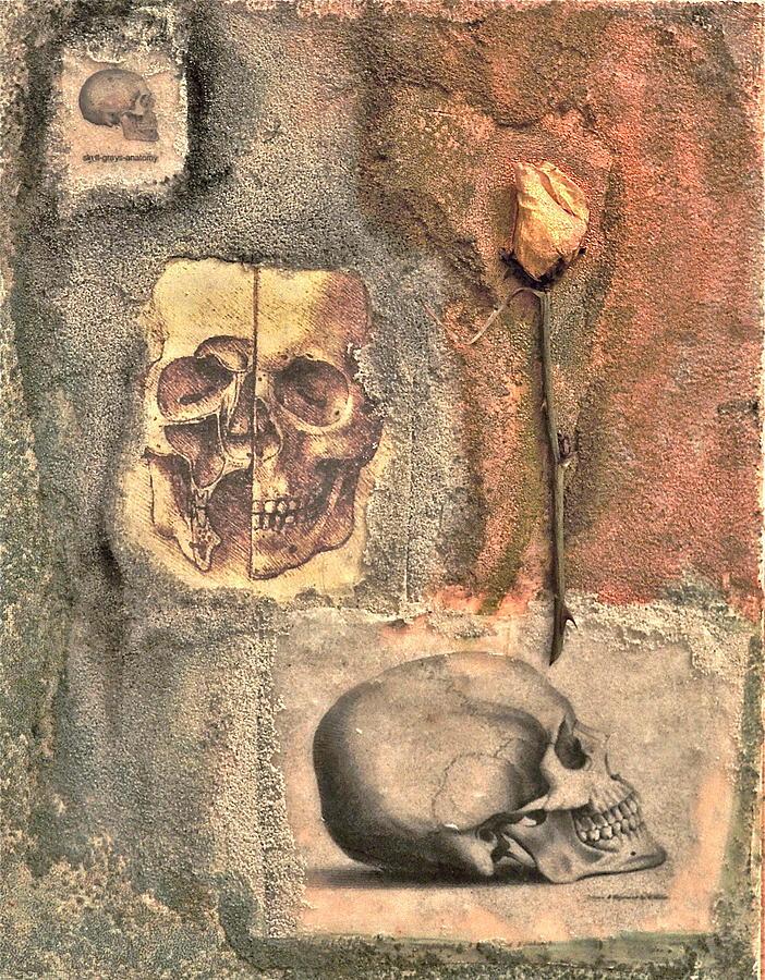 Skull Mixed Media - The Tomb by Catherine Conroy