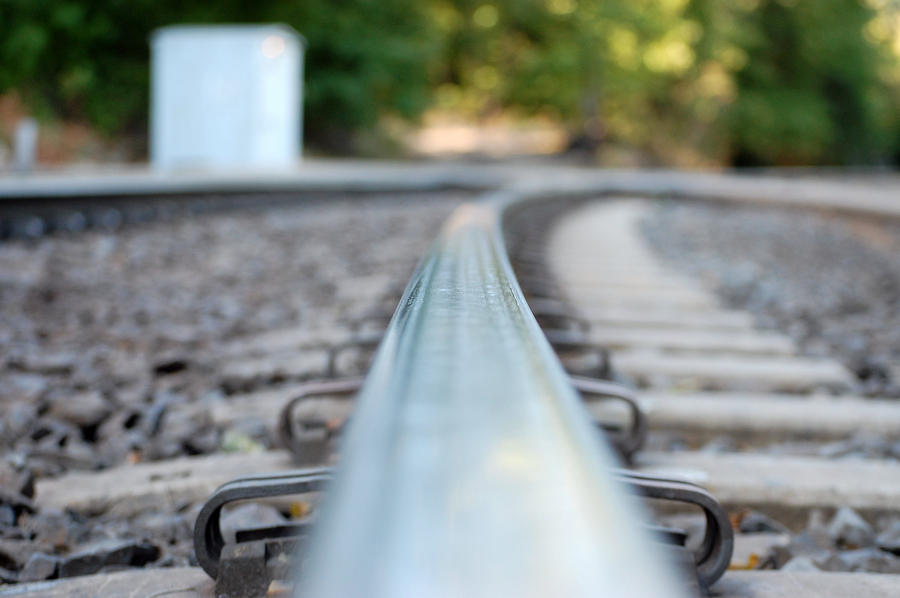 The Tracks Photograph