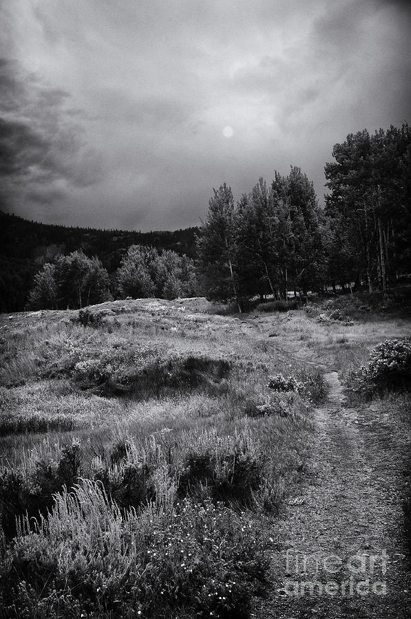 Landscape Black And White Photograph - The Trail by David Waldrop
